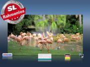 Infrarotheizung als Bild Bildheizung 600 Watt 110x60 M10-SL Flamingos