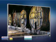 Infrarot Bildheizung 500 Watt 90x60 M10-SL Weinfässer