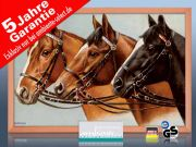 Infrarot Bildheizung 500 Watt 90x60 Holzrahmen HB30 Drei Pferde